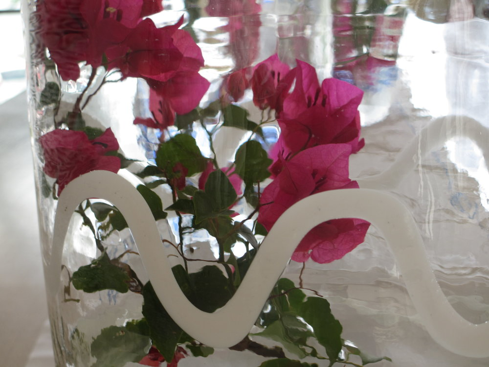 Bougainvillea in white vase.jpg