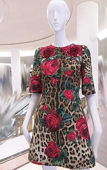 Leo Roses dress front.jpg