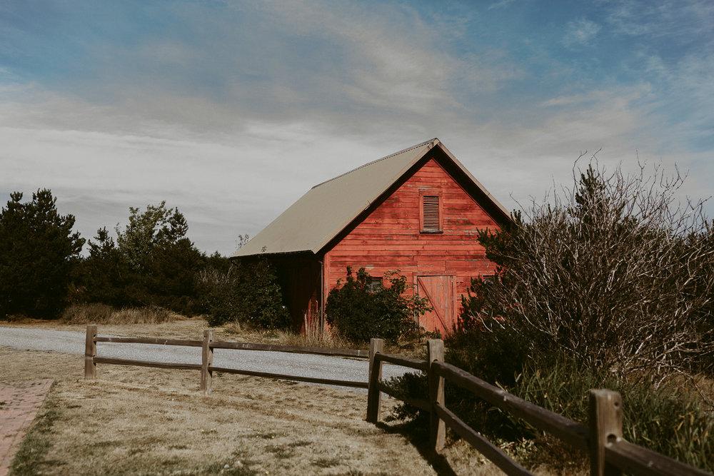 Crockett Farm Wedding_Whidbey Island Wedding_ (41 of 195).jpg