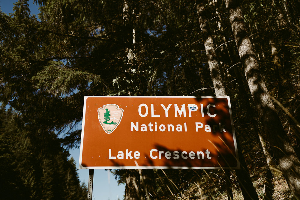 Lake Crescent Elopement_PNW Elopement Photographer_0040.jpg