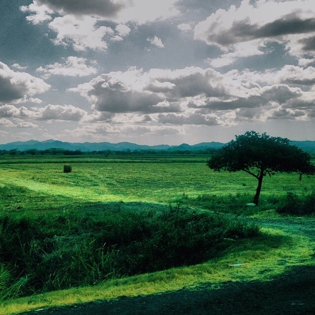 The Road to Papagayo  | Photo: Olivia Christine