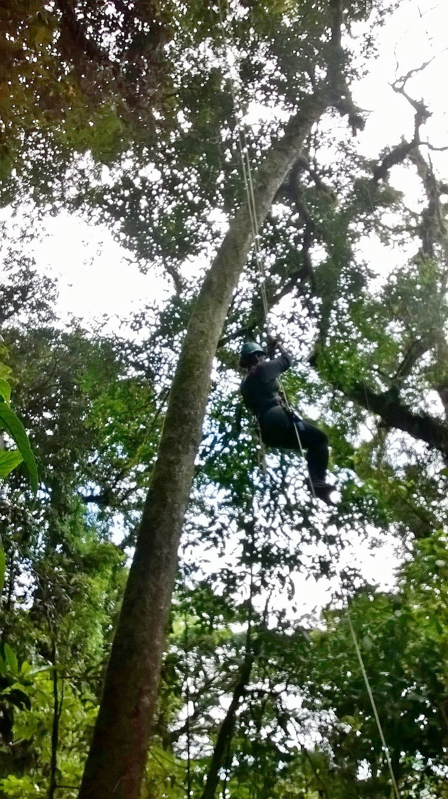 extremo-canopy-monteverde-rappel-olivia-christine