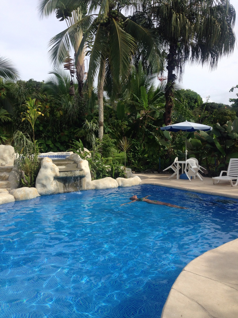 The  Casa Verde Lodge  has the most beautiful pool in Puerto Viejo.