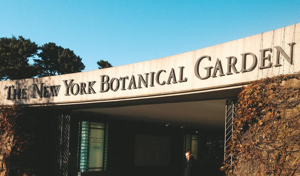 the new york botanical garden - ochristine