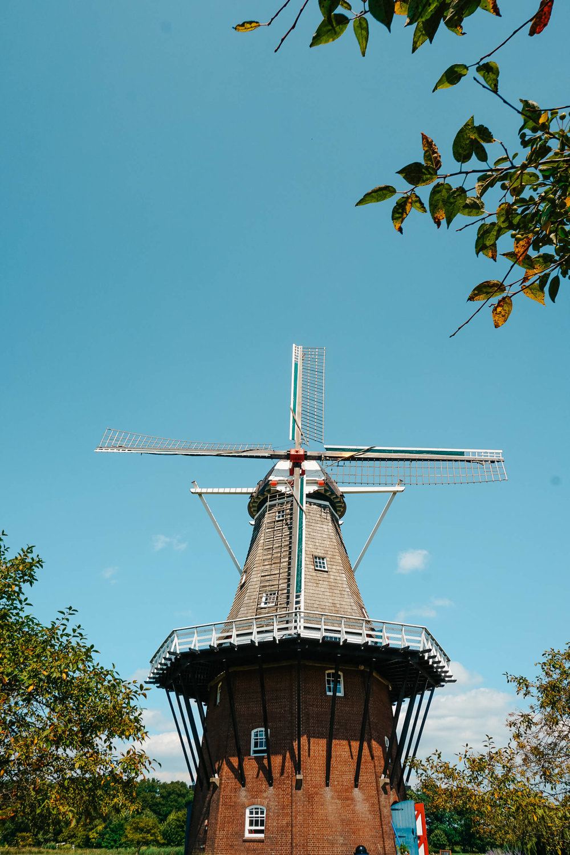 Windmill Island Gardens-ochristine-12.jpg