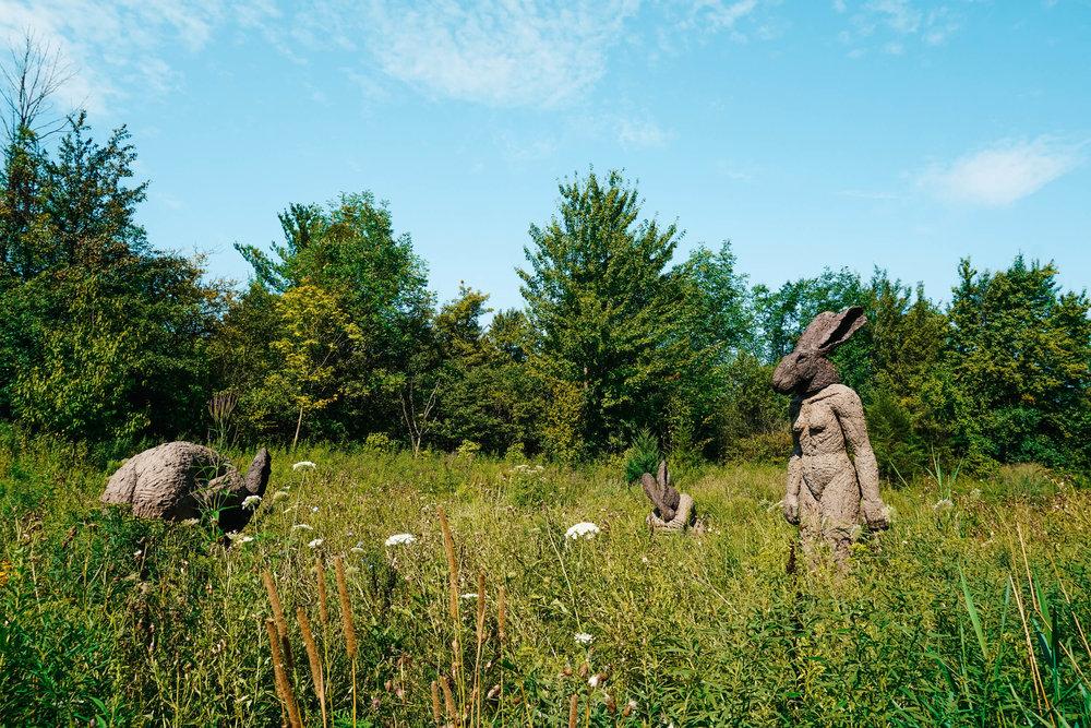 Frederik Meijer Gardens and Sculpture Park -ochristine-10.jpg