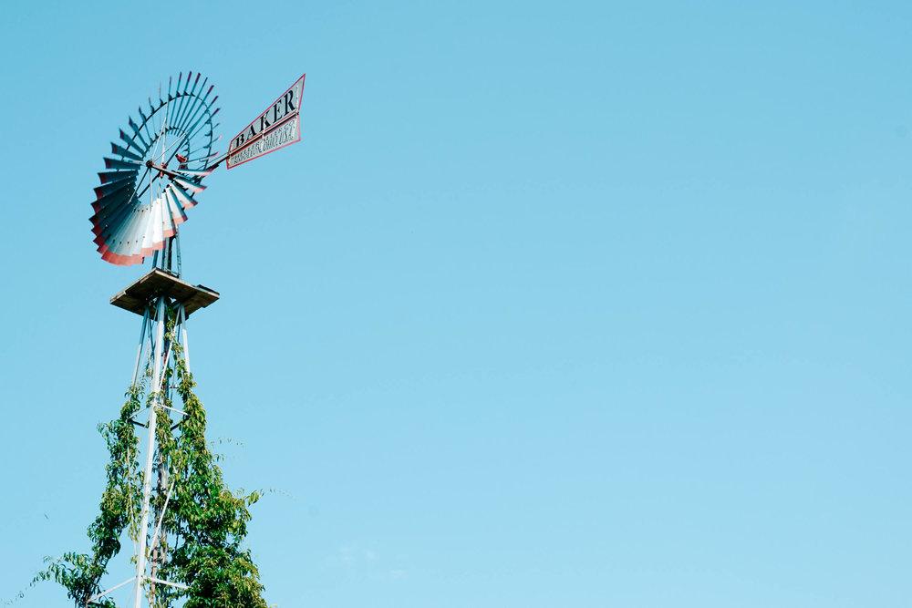 Frederik Meijer Gardens and Sculpture Park -ochristine-15.jpg