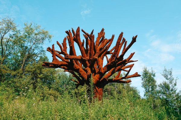What to Know Before Visiting the Frederik Meijer Gardens