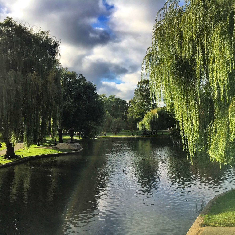 Boston Commons - weekend trips from NYC