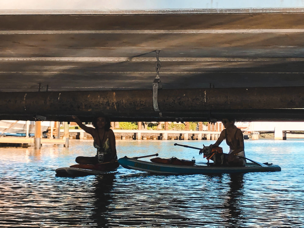 Where to Paddle Board in Fort Lauderdale - ochristine