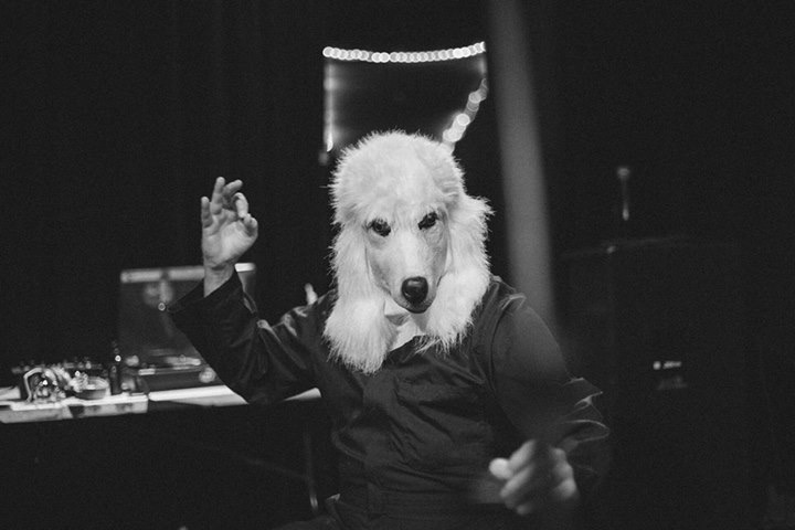 BobNastanovich_Poodle_PhotoCredit-AlexCrahan.JPG