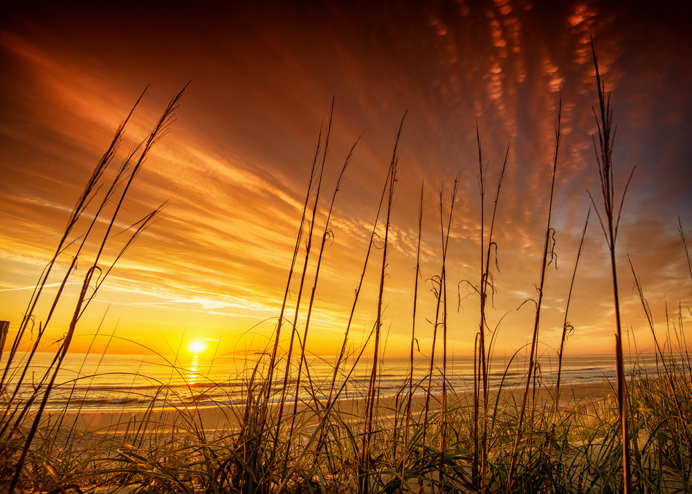 Outer_Banks_Bradford_Coolidge_Photography-2.jpg