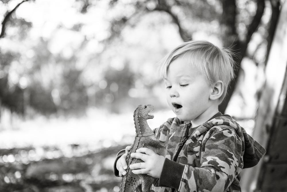 Jack & The Dinosaur
