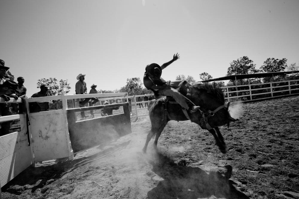 rodeo-4.jpg