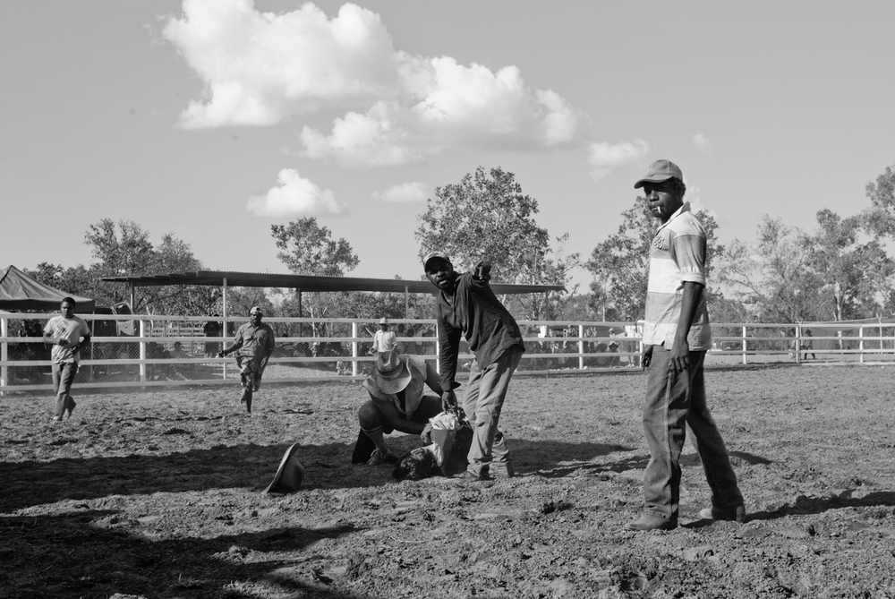 rodeo-8.jpg