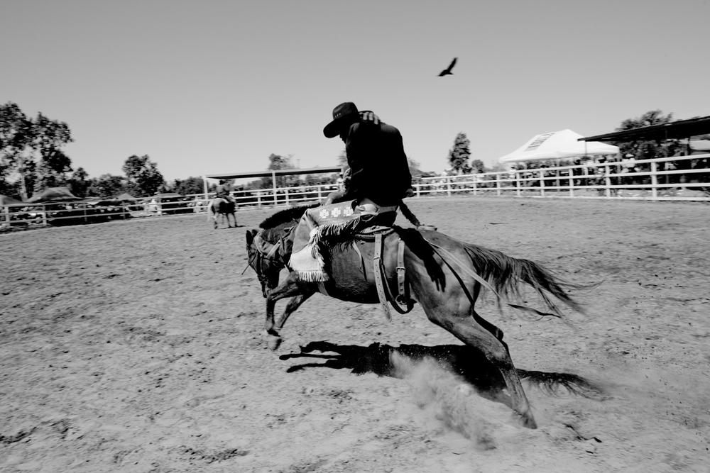 rodeo-17.jpg