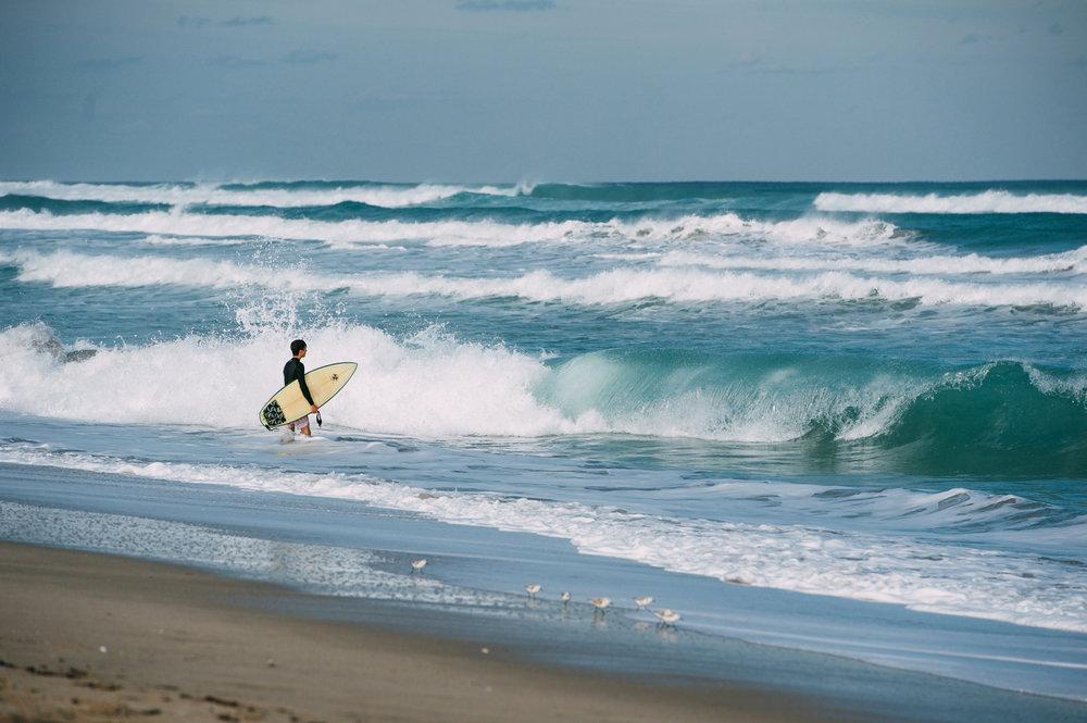 surf(2-18-16)-2(web).jpg