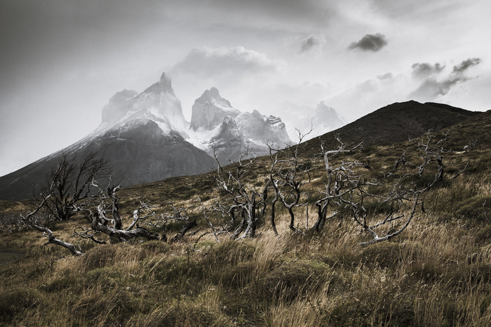 Patagonia 2015-9643.jpg