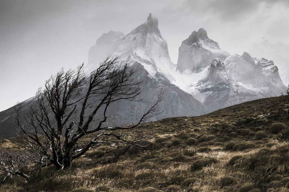 patagonia 26