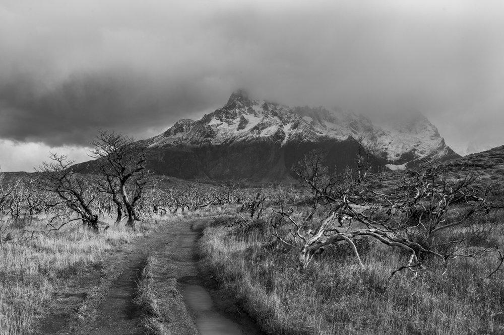 Patagonia 2015-9654.jpg