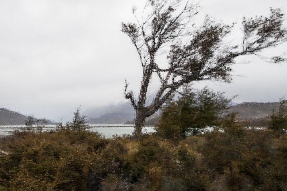 Patagonia 2015-9749.jpg
