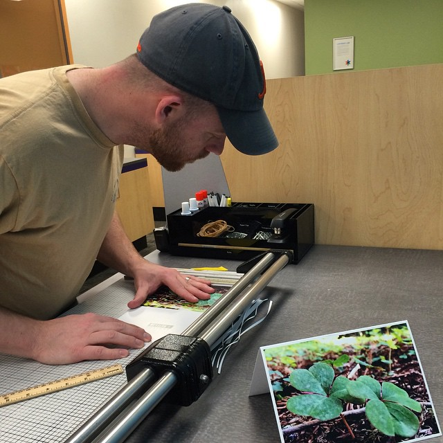 Garret (co-owner/paper cutter extraordinaire) hard at work on some test prints of our newest greeting card designs! #greetingcards #smallbusiness #design #sunnyvale #california