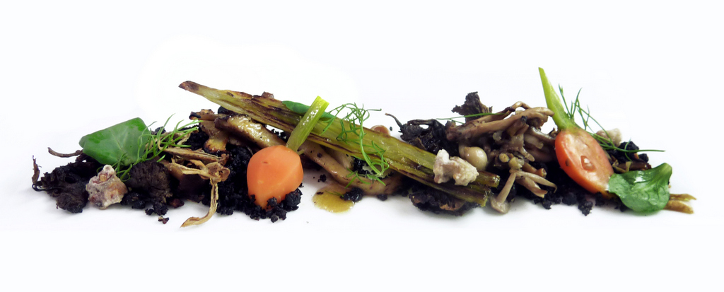 WILD MUSHROOM FOREST   smoked/grilled/pickled mushrooms - edible soil - potato twigs