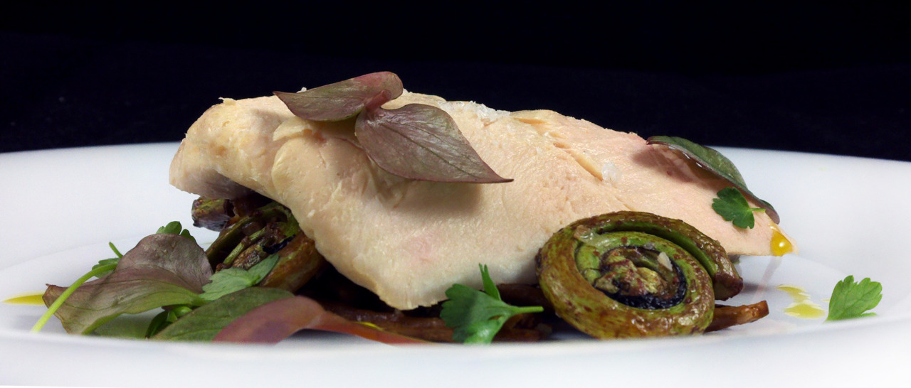 SOUS-VIDE CHICKEN BREAST    fiddlehead ferns - wild mushrooms - miner's lettuce     I like the presentation of this dish. It's like something you'd find nested in a forest somewhere which is fitting because both the mushrooms and the miner's lettuce were hand-picked and foraged from the wild.