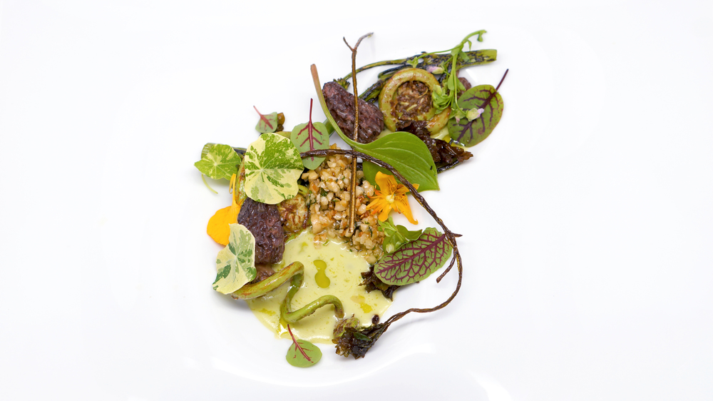 into the wild |  a salad wild of vegetables foraged from our coast