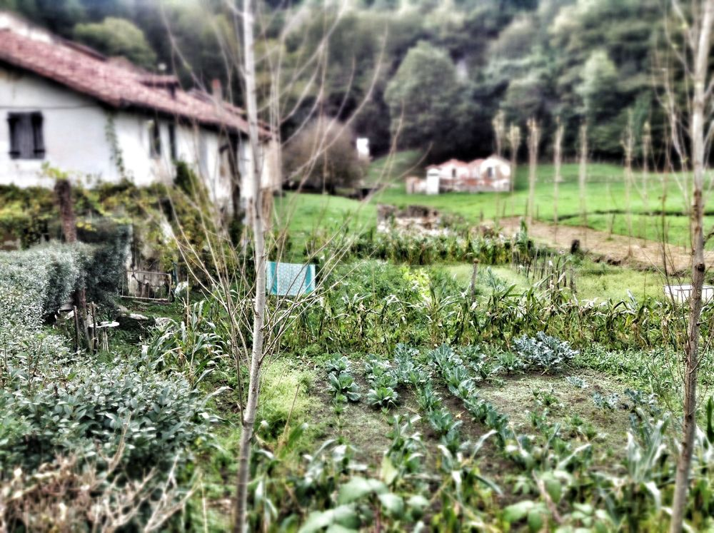 ... a few miles inland with a vegetable garden and stream...