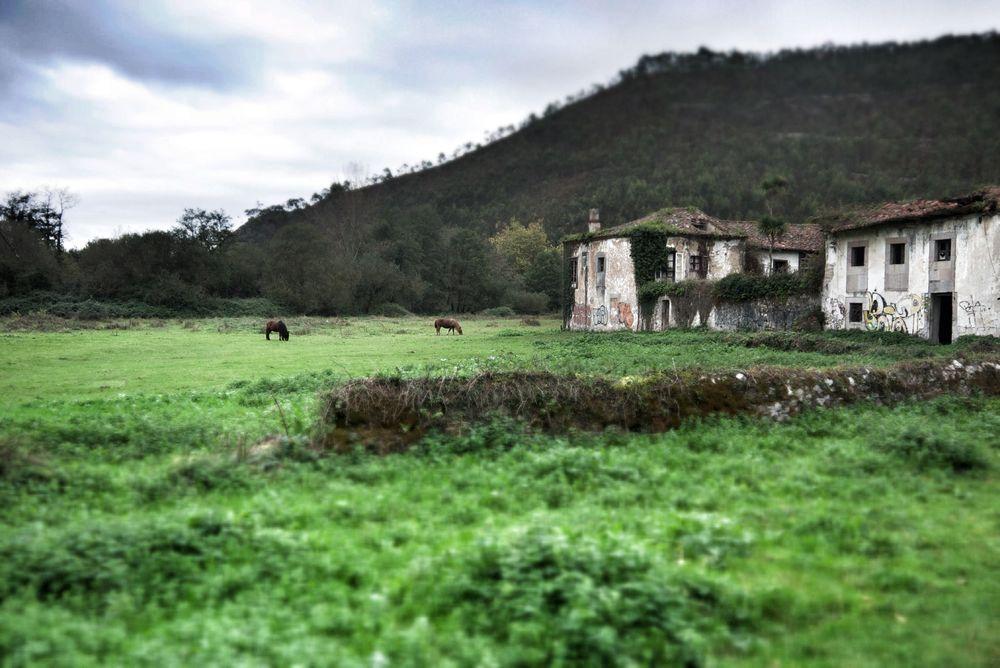 The ruined monastery buildings