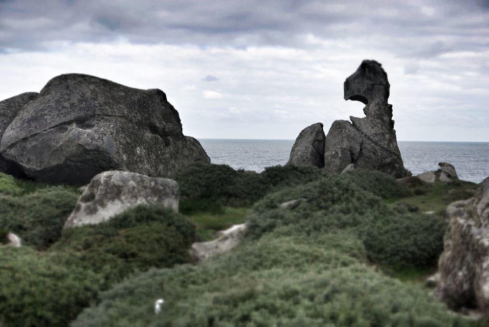 Wind-carved rocks
