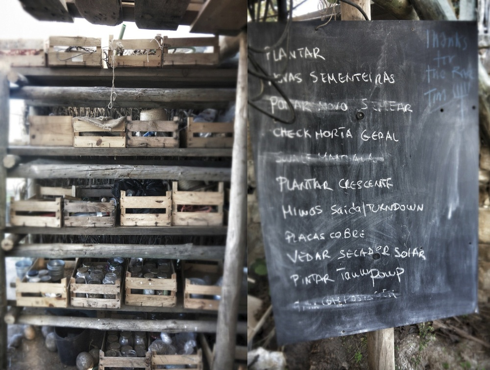 Seed stores and a to-do list