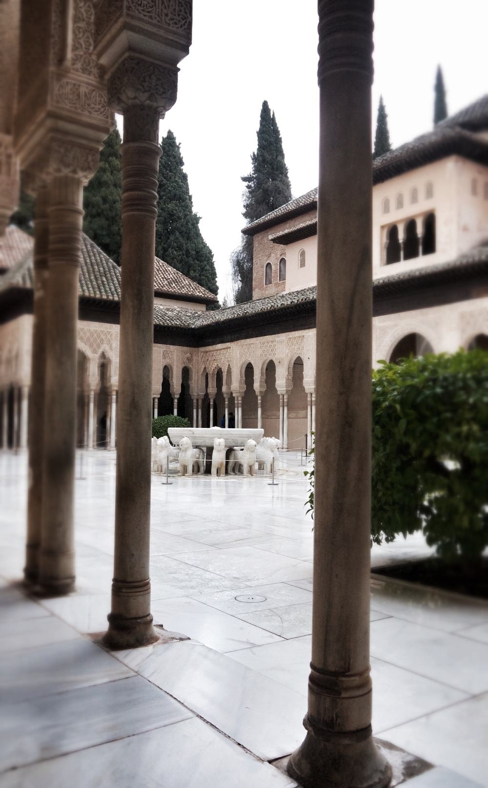 The Lion Courtyard