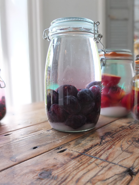 Fruit Gin Plums