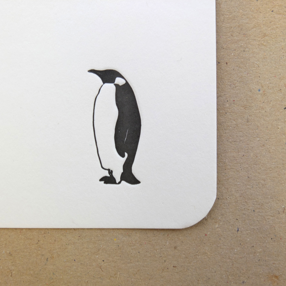 Wolf & Ink Lone Penguin Notecards_02.JPG