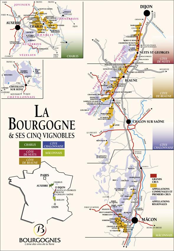 Bourgogne frank fissette wineconsultancy for Region yonne