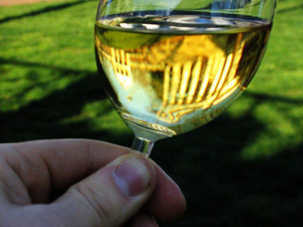 Chardonnay-UVa.jpg