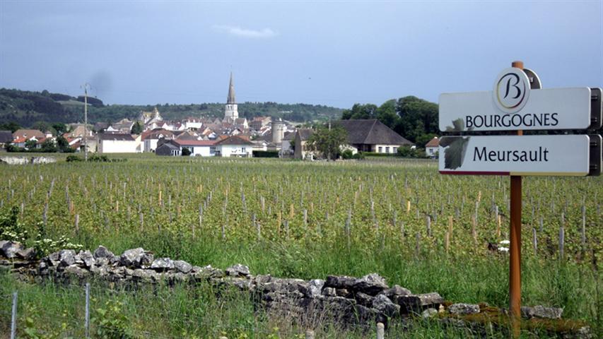 Meursault-052012-Small.jpg