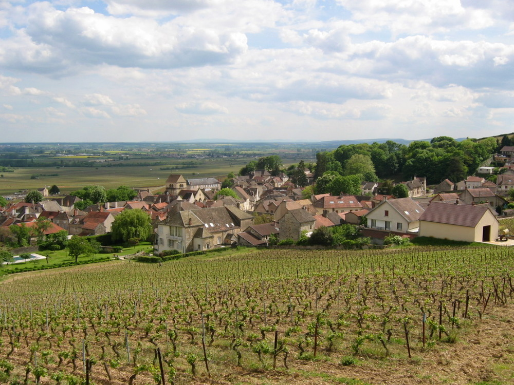 volnay-photo1.jpg