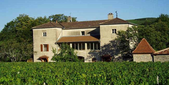 16417-650x330-autre-domaine-de-la-soufrandise-pouilly-fuisse.png