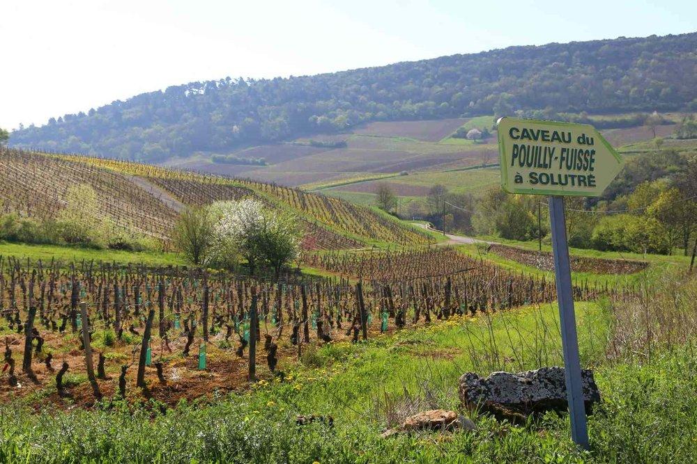 apero-winebar-domaine-rober-denogent-2.jpg