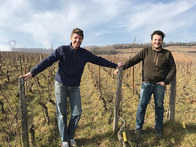 Here it started more than 30 years ago. Antoine and Nicolas Robert in the 'Les Reisses' vineyard in Fuissé. #domainerobertdenogent #macon #burgundy