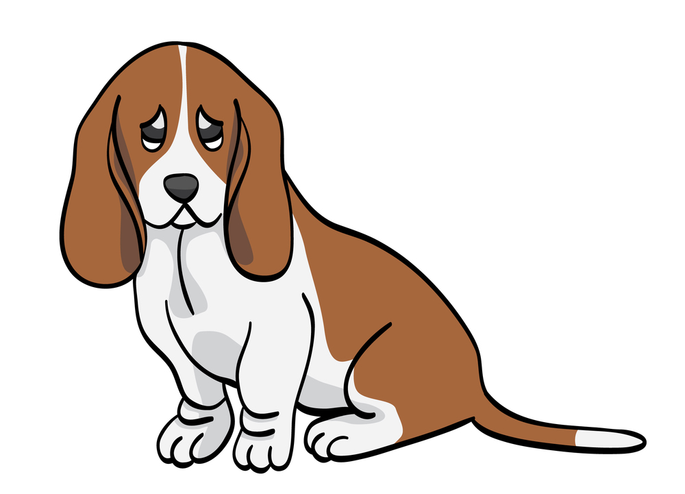 basset_hound_by_caitlyn1701-d3a17dt.jpg