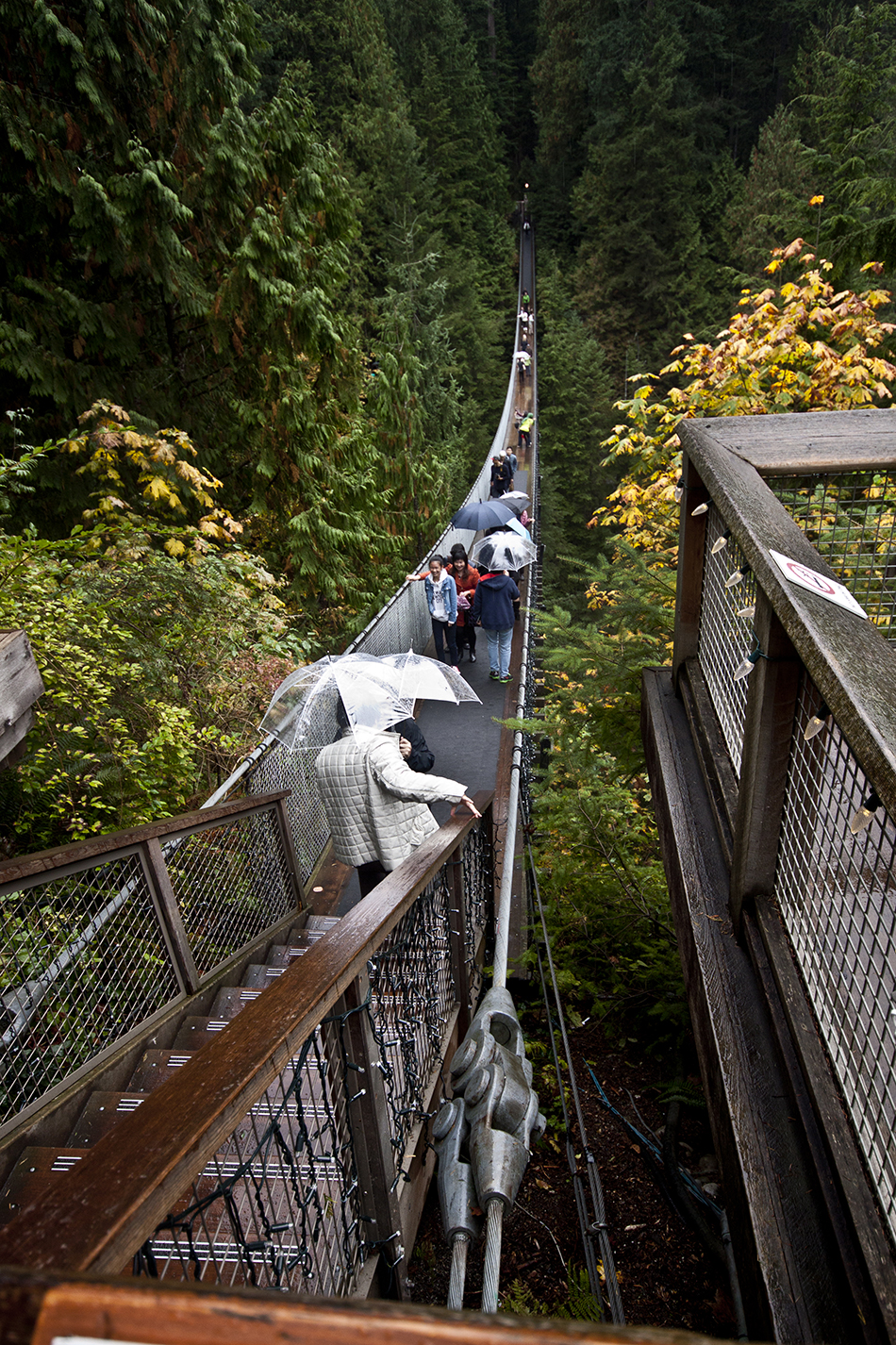 Tourists crossing the Capilano Suspension Bridge.