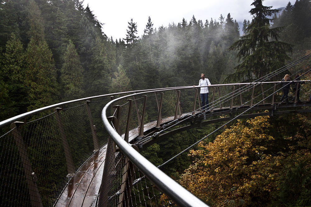 The catwalk in Capilano Park.