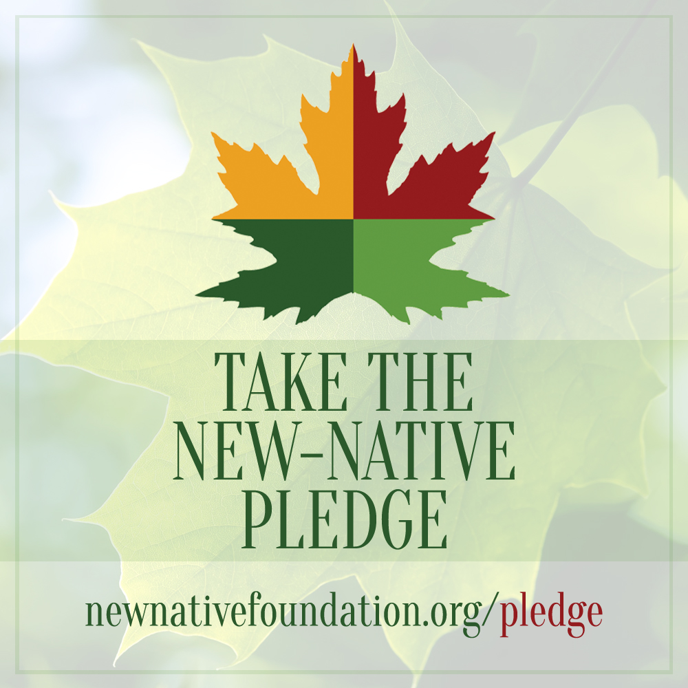New-Native Foundation seeks to network together educators of American Traditional Ecological Knowledge skills whom uphold the New-Native Foundation philosophy and mission. What are you willing to do to show your dedication?
