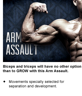 arm-assault.png