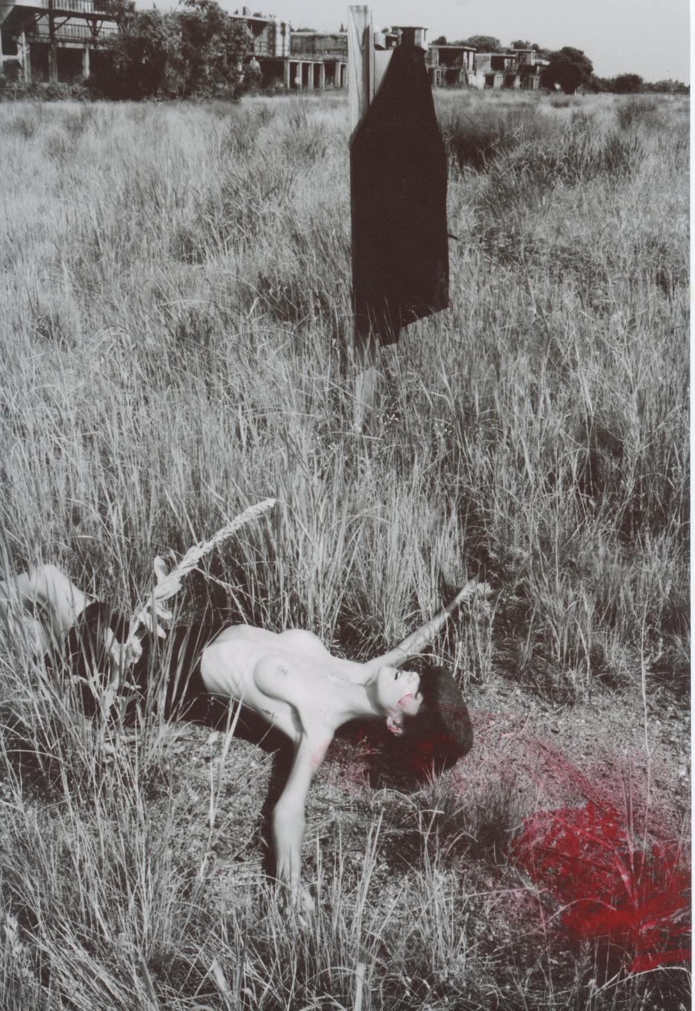 Michael Donovan Death 13.jpg