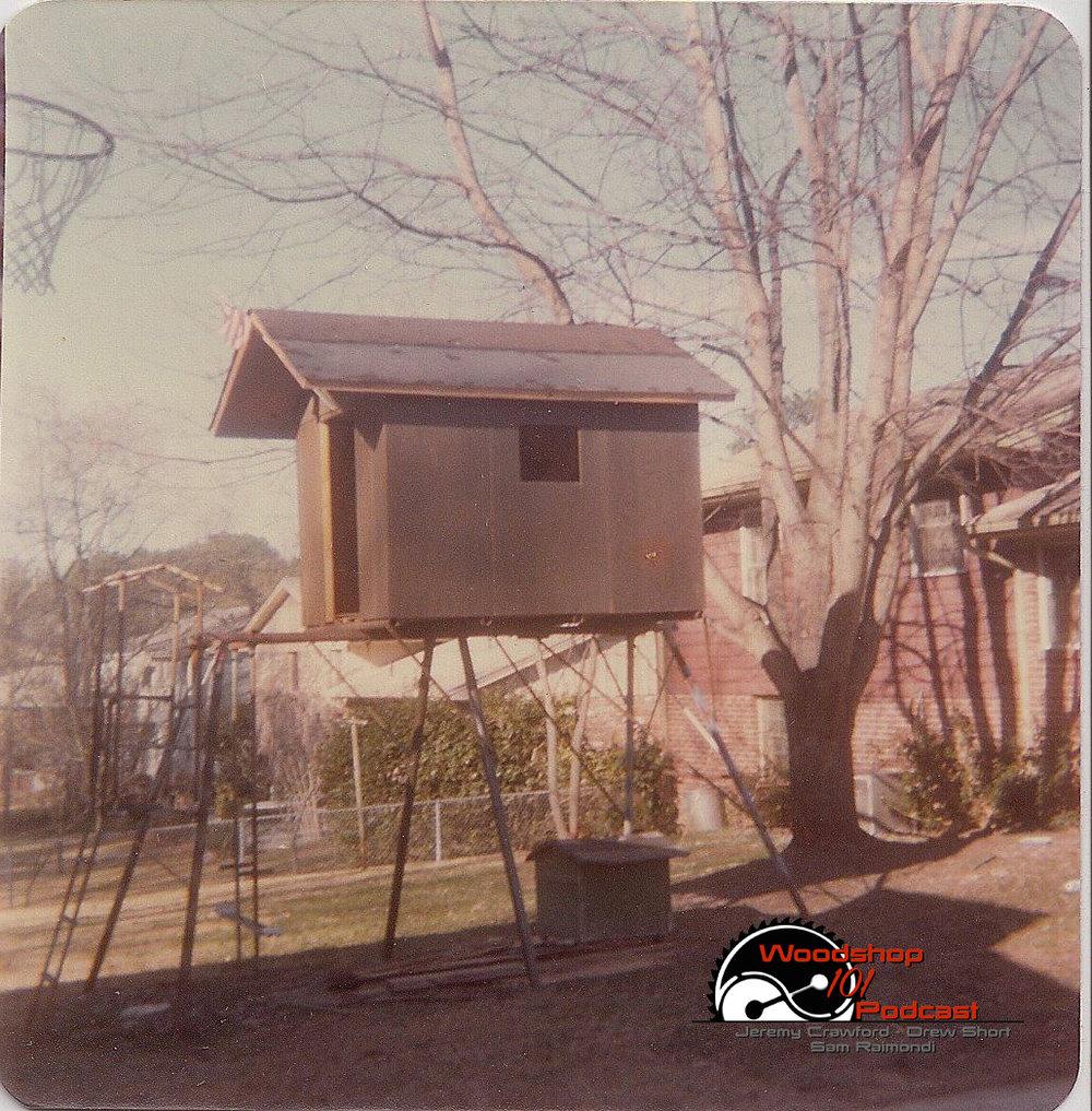 Steve's Tree House.jpg